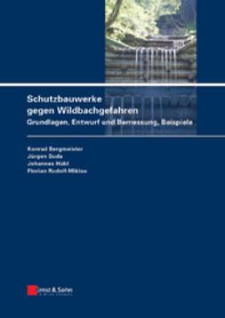 Bergmeister, Konrad - Schutzbauwerke gegen Wildbachgefahren: Grundlagen, Entwurf und Bemessung, Beispiele, ebook