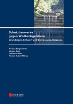 Bergmeister, Konrad - Schutzbauwerke gegen Wildbachgefahren: Grundlagen, Entwurf und Bemessung, Beispiele, e-bok