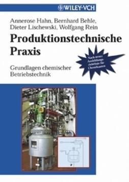 Hahn, Annerose - Produktionstechnische Praxis: Grundlagen chemischer Betriebstechnik, ebook