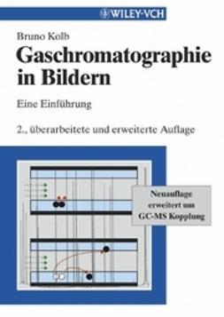 Kolb, Bruno - Gaschromatographie in Bildern: Eine Einführung, ebook