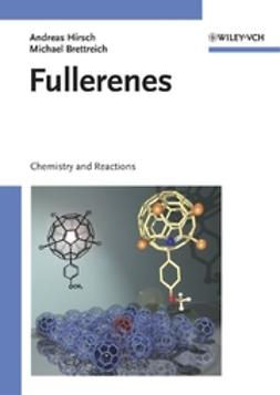 Brettreich, Michael - Fullerenes: Chemistry and Reactions, ebook
