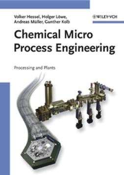 Hessel, Volker - Chemical Micro Process Engineering: Processing and Plants, ebook