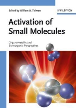 Tolman, William B. - Activation of Small Molecules: Organometallic and Bioinorganic Perspectives, ebook