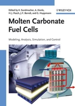 Berndt, Joachim F. - Molten Carbonate Fuel Cells: Modeling, Analysis, Simulation, and Control, ebook