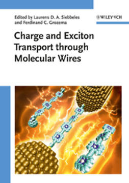 Siebbeles, Laurens D. A. - Charge and Exciton Transport through Molecular Wires, ebook