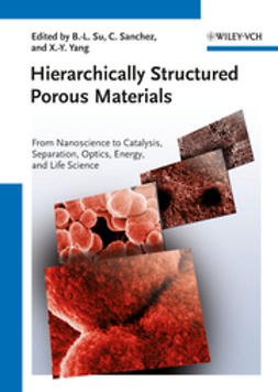 Su, Bao-Lian - Hierarchically Structured Porous Materials, e-kirja