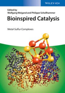 Schollhammer, Philippe - Bioinspired Catalysis: Metal-Sulfur Complexes, ebook