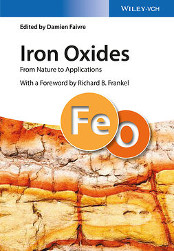 Faivre, Damien - Iron Oxides: From Nature to Applications, e-bok