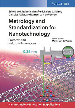 Fujita, Daisuke - Metrology and Standardization of Nanotechnology: Protocols and Industrial Innovations, ebook