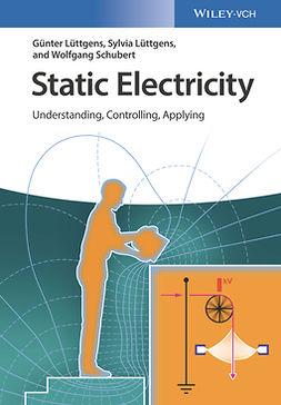 Lüttgens, Günter - Static Electricity: Understanding, Controlling, Applying, ebook