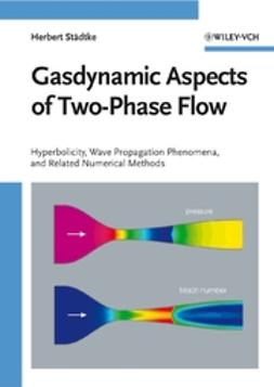 Staedtke, Herbert - Gasdynamic Aspects of Two-Phase Flow: Hyperbolicity, Wave Propagation Phenomena, and Related Numerical Methods, ebook