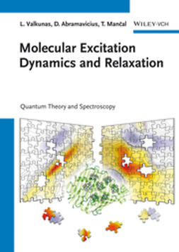 Valkunas, Leonas - Molecular Excitation Dynamics and Relaxation: Quantum Theory and Spectroscopy, ebook