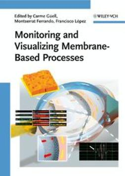 Güell, Carme - Monitoring and Visualizing Membrane-Based Processes, ebook