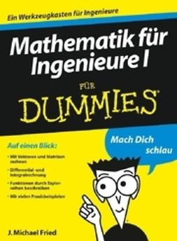 Fried, J. Michael - Mathematik fur Ingenieure I fur Dummies, ebook