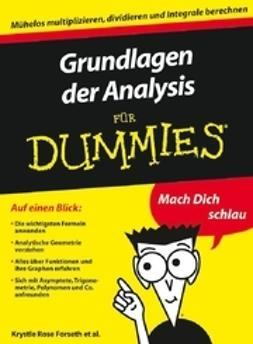 Burger, Christopher - Grundlagen der Analysis für Dummies, e-bok