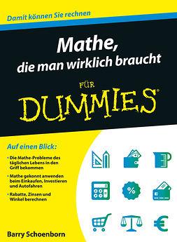 Schoenborn, Barry - Mathe, die man wirklich braucht fr Dummies, ebook