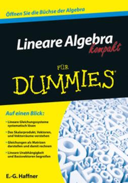 Haffner, Ernst Georg - Lineare Algebra kompakt für Dummies, ebook