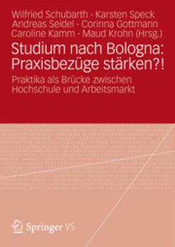 Schubarth, Wilfried - Studium nach Bologna: Praxisbezüge stärken?!, ebook