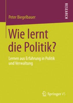 Biegelbauer, Peter - Wie lernt die Politik?, ebook