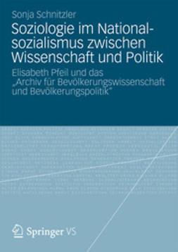 Schnitzler, Sonja - Soziologie im Nationalsozialismus zwischen Wissenschaft und Politik, ebook