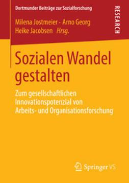 Jostmeier, Milena - Sozialen Wandel gestalten, ebook