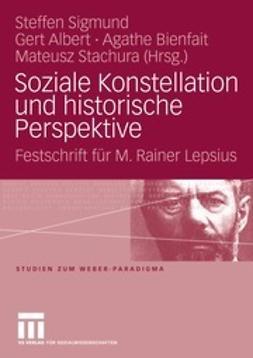 Sigmund, Steffen - Soziale Konstellation und historische Perspektive, ebook