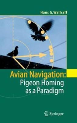 Wallraff, Hans G. - Avian Navigation: Pigeon Homing as a Paradigm, ebook
