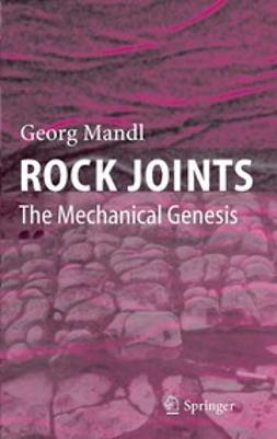 Mandl, Georg - Rock Joints, ebook