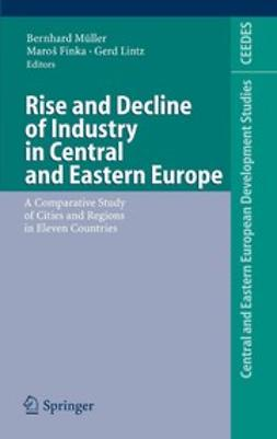 Finka, Maroš - Rise and Decline of Industry in Central and Eastern Europe, e-bok
