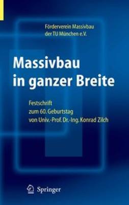 Niedermeier, Roland - Massivbau in ganzer Breite, e-bok