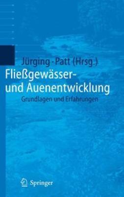 Jürging, Peter - Fließgewässer- und Auenentwicklung, ebook