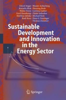 (†), Wouter Achterberg - Sustainable Development and Innovation in the Energy Sector, e-kirja