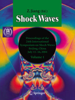Jiang, Z. - Shock Waves, e-bok
