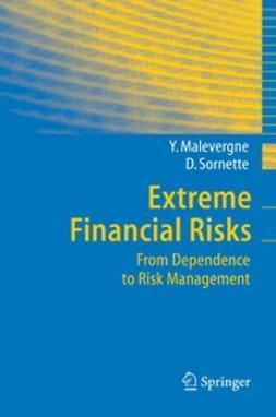 Malevergne, Yannick - Extreme Financial Risks, ebook
