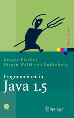 Fischer, Gregor - Programmieren in Java 1.5, e-bok
