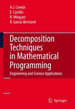 Castillo, Enrique - Decomposition Techniques in Mathematical Programming, ebook