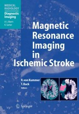 Back, Tobias - Magnetic Resonance Imaging in Ischemic Stroke, ebook