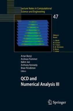 Bori~i, Artan - QCD and Numerical Analysis III, ebook