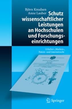 Knudsen, Björn - Schutz wissenschaftlicher Leistungen an Hochschulen und Forschungseinrichtungen, ebook