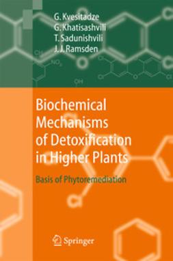 Khatisashvili, Gia - Biochemical Mechanisms of Detoxification in Higher Plants, ebook