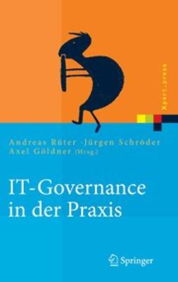 Göldner, Axel - IT-Governance in der Praxis, ebook