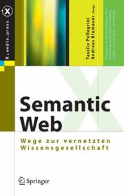 Blumauer, Andreas - Semantic Web, ebook