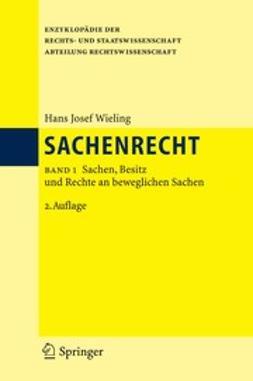 Wieling, Hans Josef - Sachenrecht, e-kirja