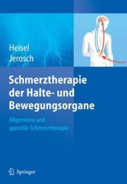 Baum, M. - Schmerztherapie der Halte- und Bewegungsorgane, ebook