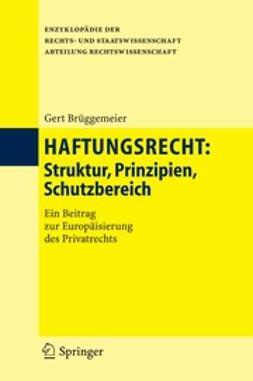 Brüggemeier, Gert - Haftungsrecht, e-bok