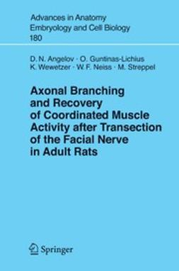 Angelov, Doychin N. - Axonal Branching and Recovery of Coordinated Muscle Activity after Transection of the Facial Nerve in Adult Rats, ebook
