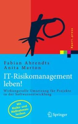 Ahrendts, Fabian - IT-Risikomanagement leben, ebook