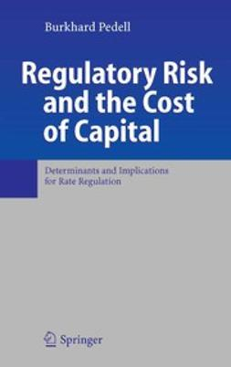 Pedell, Burkhard - Regulatory Risk and the Cost of Capital, e-bok