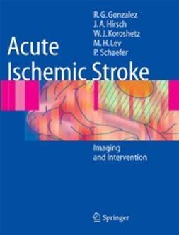 González, R. Gilberto - Acute Ischemic Stroke, ebook