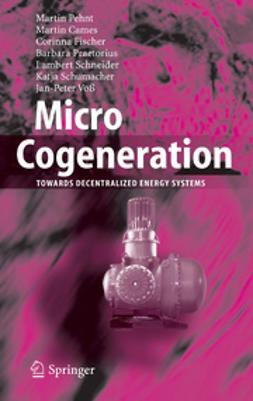 Micro Cogeneration